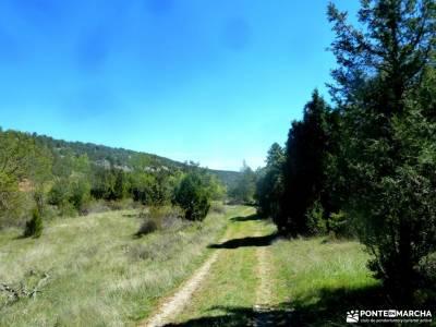 Río Cega,Santa Águeda–Pedraza;bosque de muniellos viajes agosto la pedriza rutas